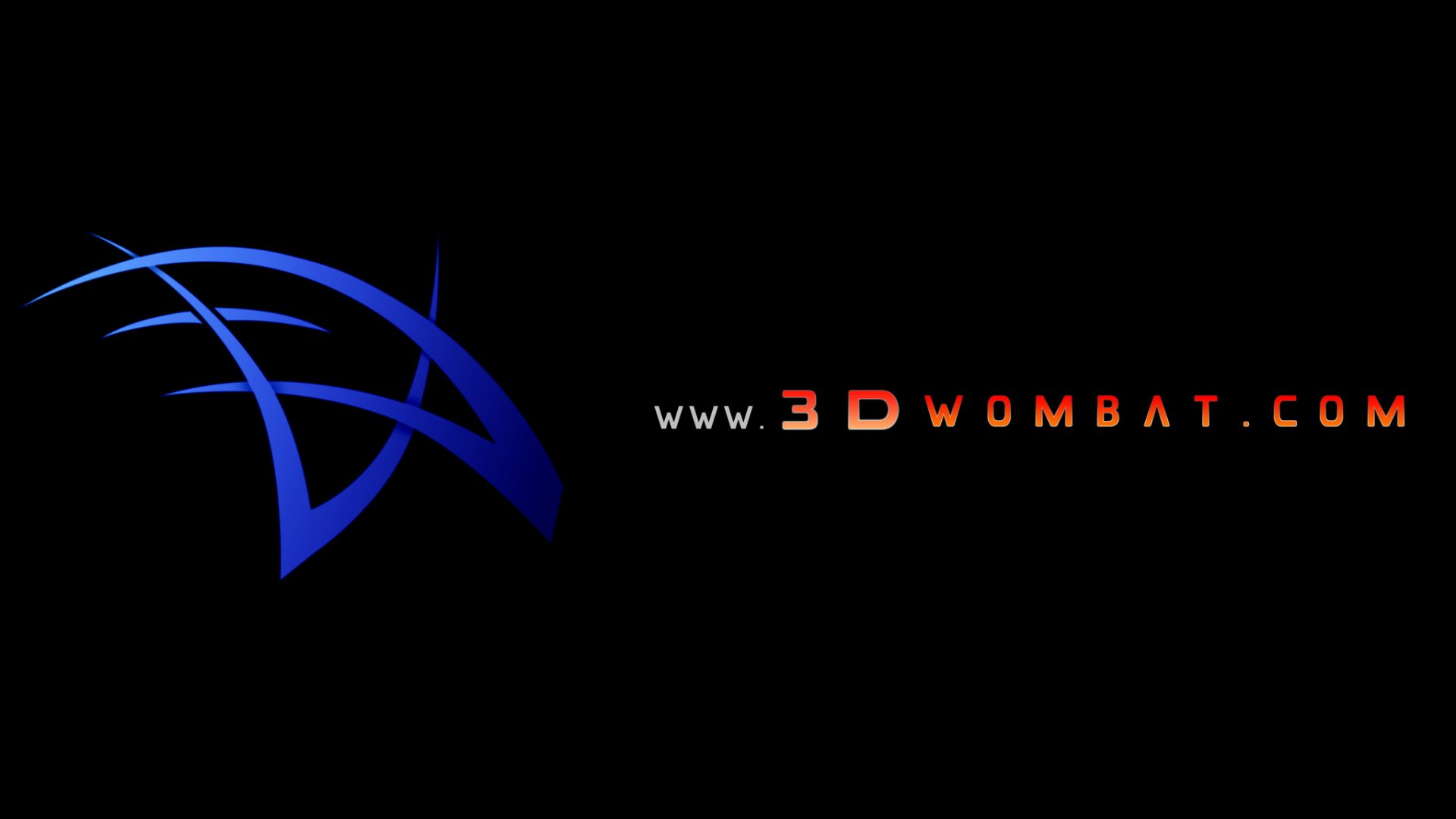 3D Wombat