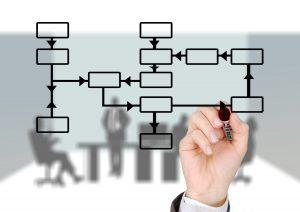 Process organigram